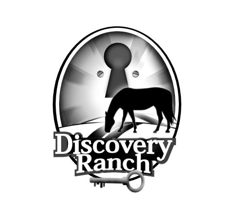 Logo Design by Tim Holley - Entry No. 38 in the Logo Design Contest Creative Logo Design for Discovery Ranch.