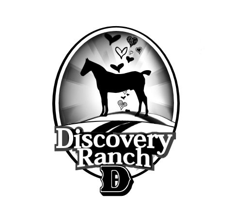 Logo Design by Tim Holley - Entry No. 39 in the Logo Design Contest Creative Logo Design for Discovery Ranch.