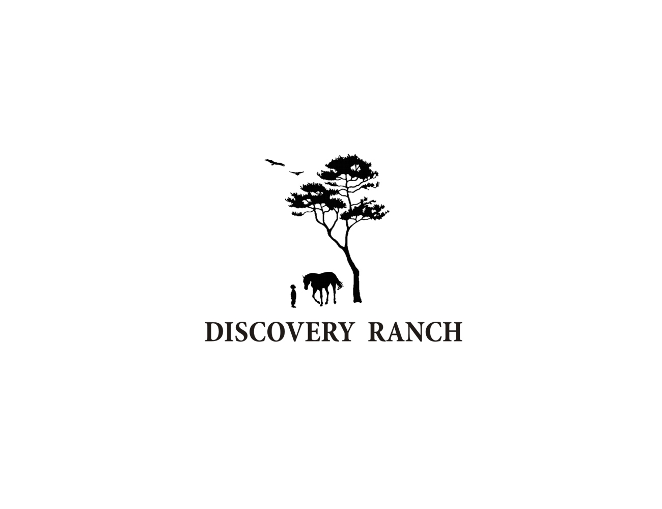 Logo Design by Q_Division_Designs - Entry No. 49 in the Logo Design Contest Creative Logo Design for Discovery Ranch.