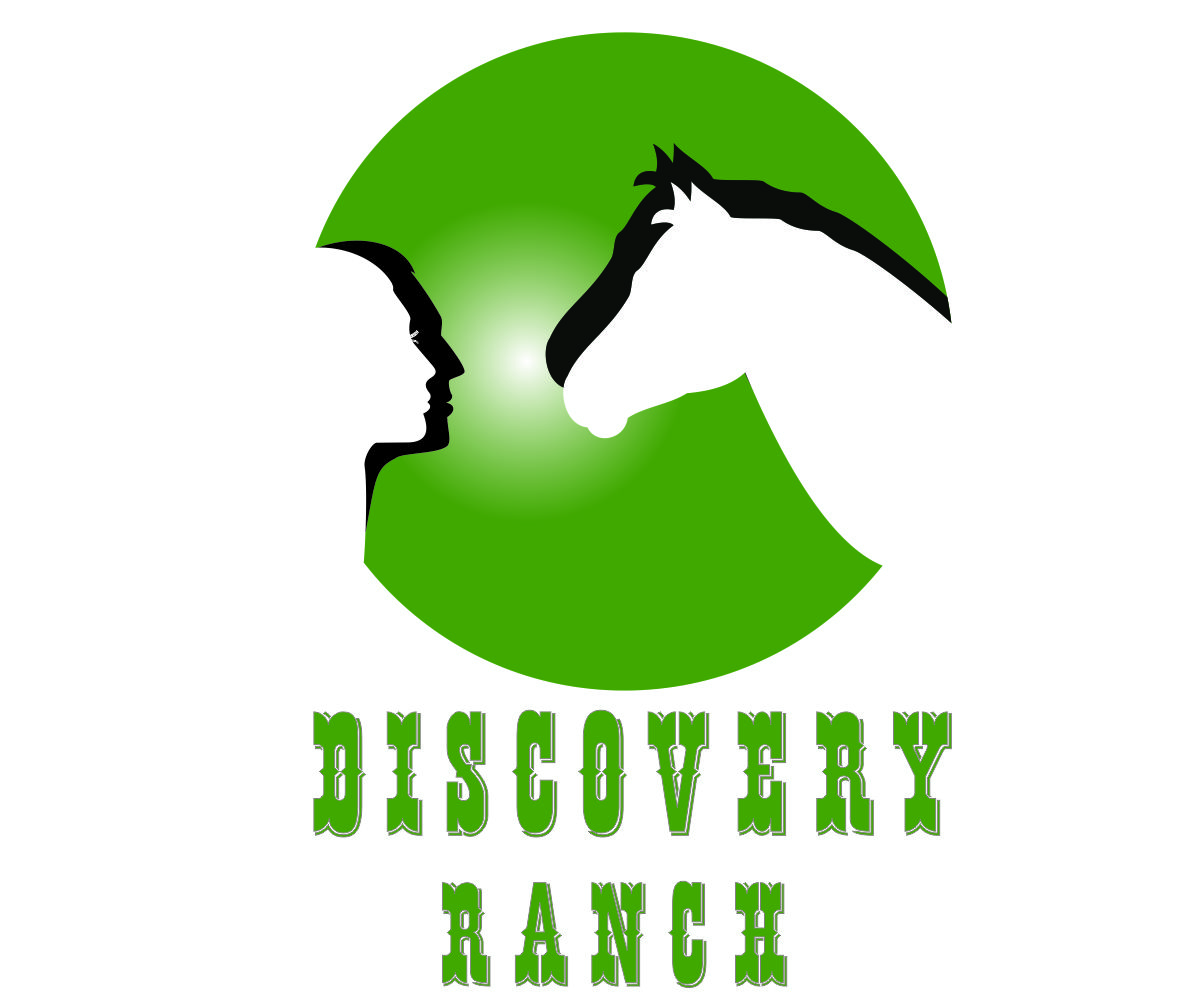Logo Design by franz - Entry No. 53 in the Logo Design Contest Creative Logo Design for Discovery Ranch.