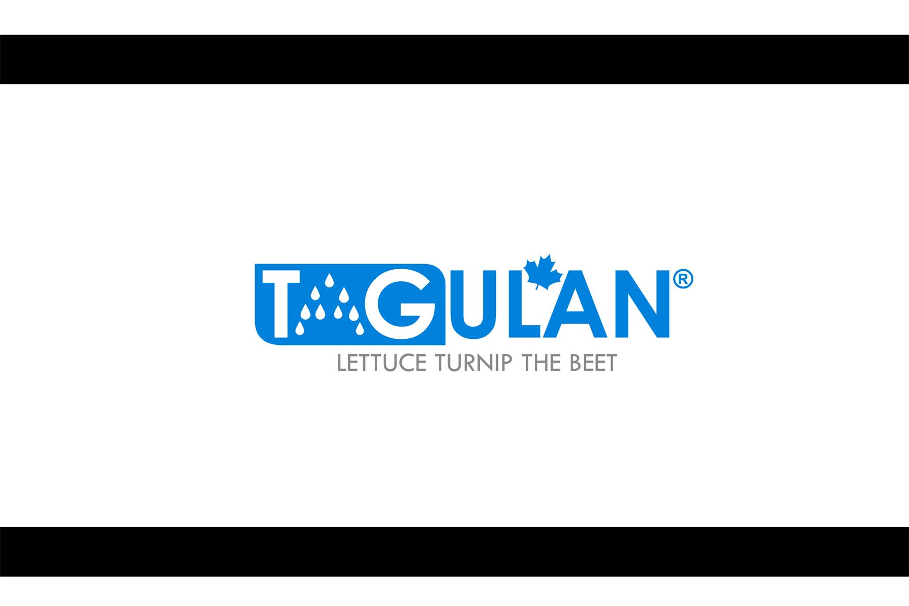 Logo Design by Private User - Entry No. 62 in the Logo Design Contest Unique Logo Design Wanted for Tagulan.