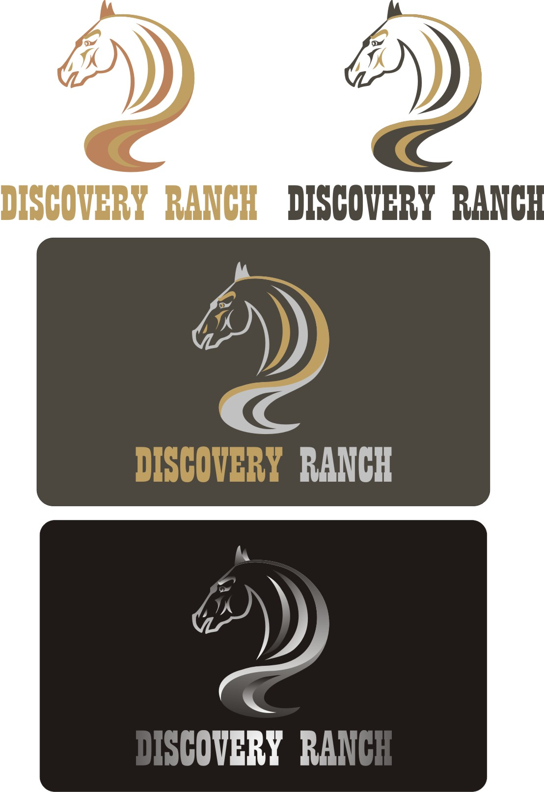Logo Design by Korsunov Oleg - Entry No. 69 in the Logo Design Contest Creative Logo Design for Discovery Ranch.