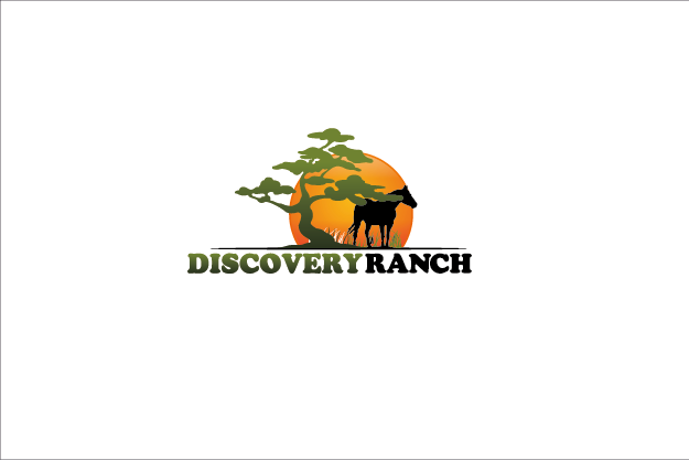 Logo Design by Private User - Entry No. 75 in the Logo Design Contest Creative Logo Design for Discovery Ranch.
