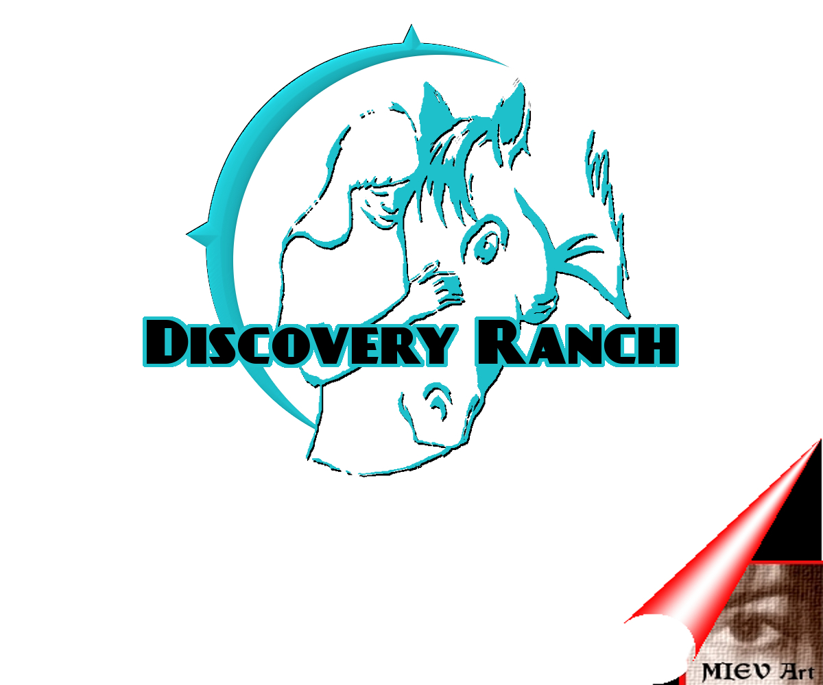 Logo Design by Eric Vincent - Entry No. 106 in the Logo Design Contest Creative Logo Design for Discovery Ranch.