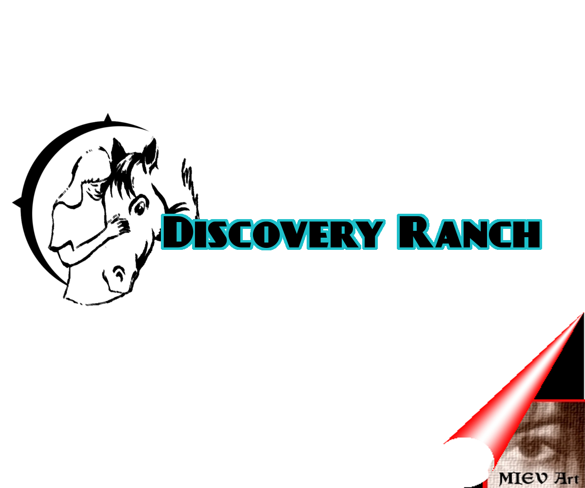 Logo Design by Eric Vincent - Entry No. 108 in the Logo Design Contest Creative Logo Design for Discovery Ranch.