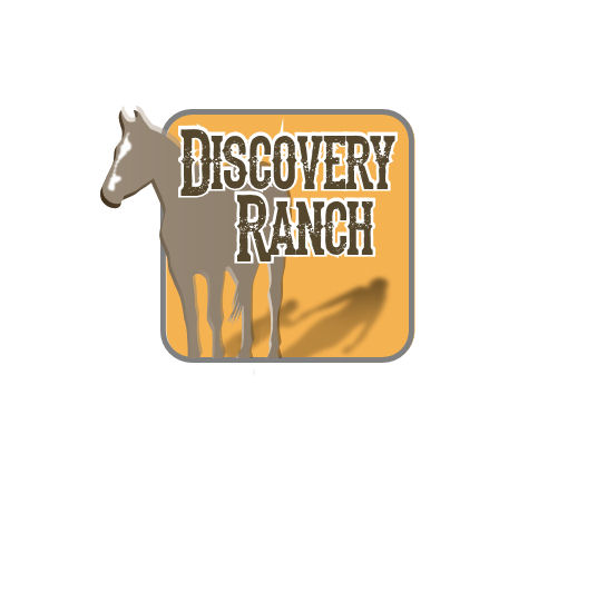 Logo Design by Tim Holley - Entry No. 139 in the Logo Design Contest Creative Logo Design for Discovery Ranch.