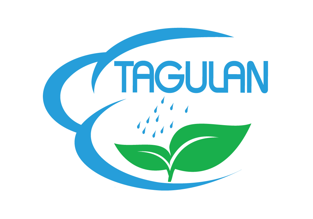 Logo Design by Amianan - Entry No. 123 in the Logo Design Contest Unique Logo Design Wanted for Tagulan.
