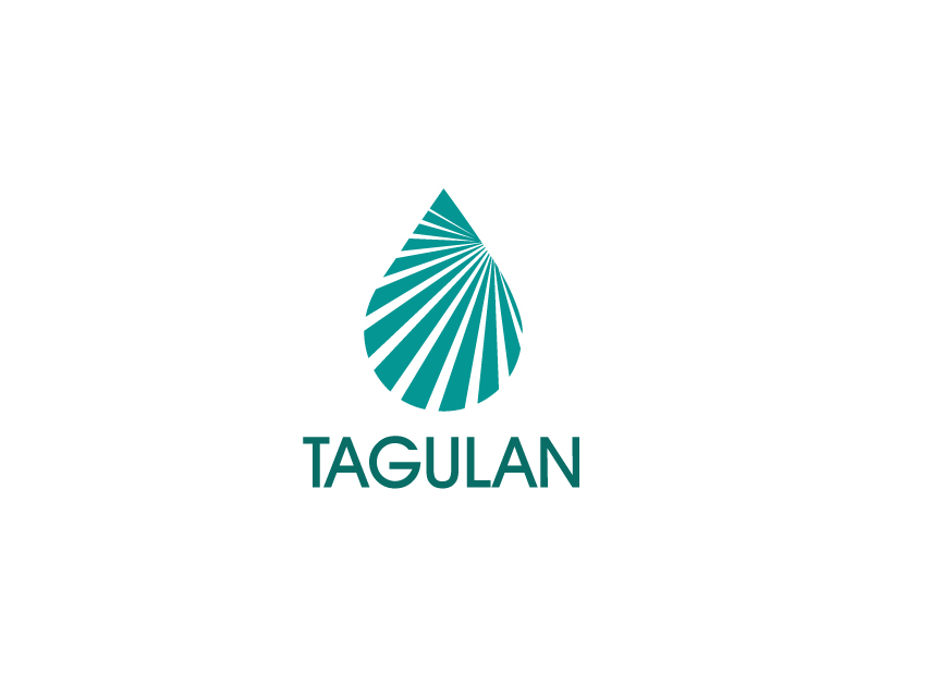 Logo Design by Richard Soriano - Entry No. 190 in the Logo Design Contest Unique Logo Design Wanted for Tagulan.