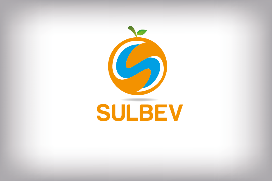 Logo Design by Private User - Entry No. 77 in the Logo Design Contest Creative Logo Design for SULBEV.