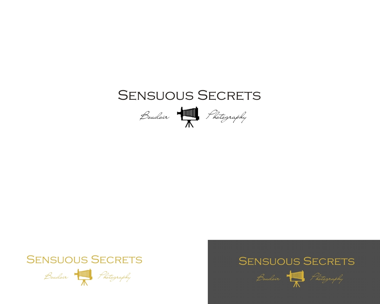 Logo Design by Q_Division_Designs - Entry No. 62 in the Logo Design Contest Artistic Logo Design for Sensuous Secrets Boudoir Photography.