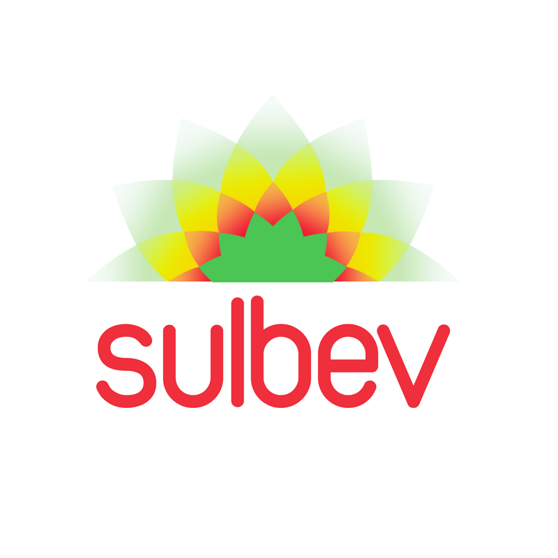 Logo Design by Private User - Entry No. 140 in the Logo Design Contest Creative Logo Design for SULBEV.