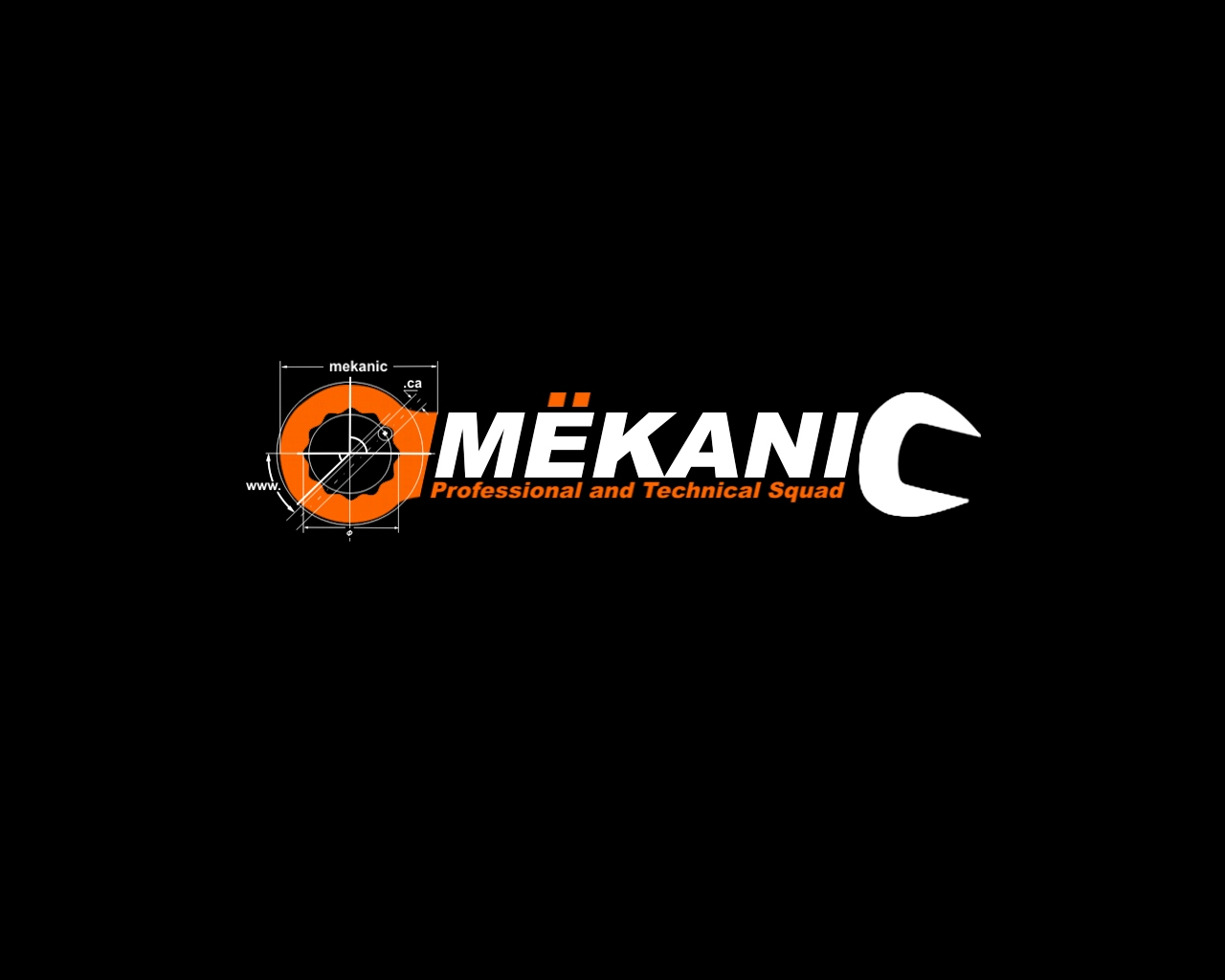 Logo Design by Q_Division_Designs - Entry No. 140 in the Logo Design Contest Creative Logo Design for MËKANIC - Professional and technical squad.