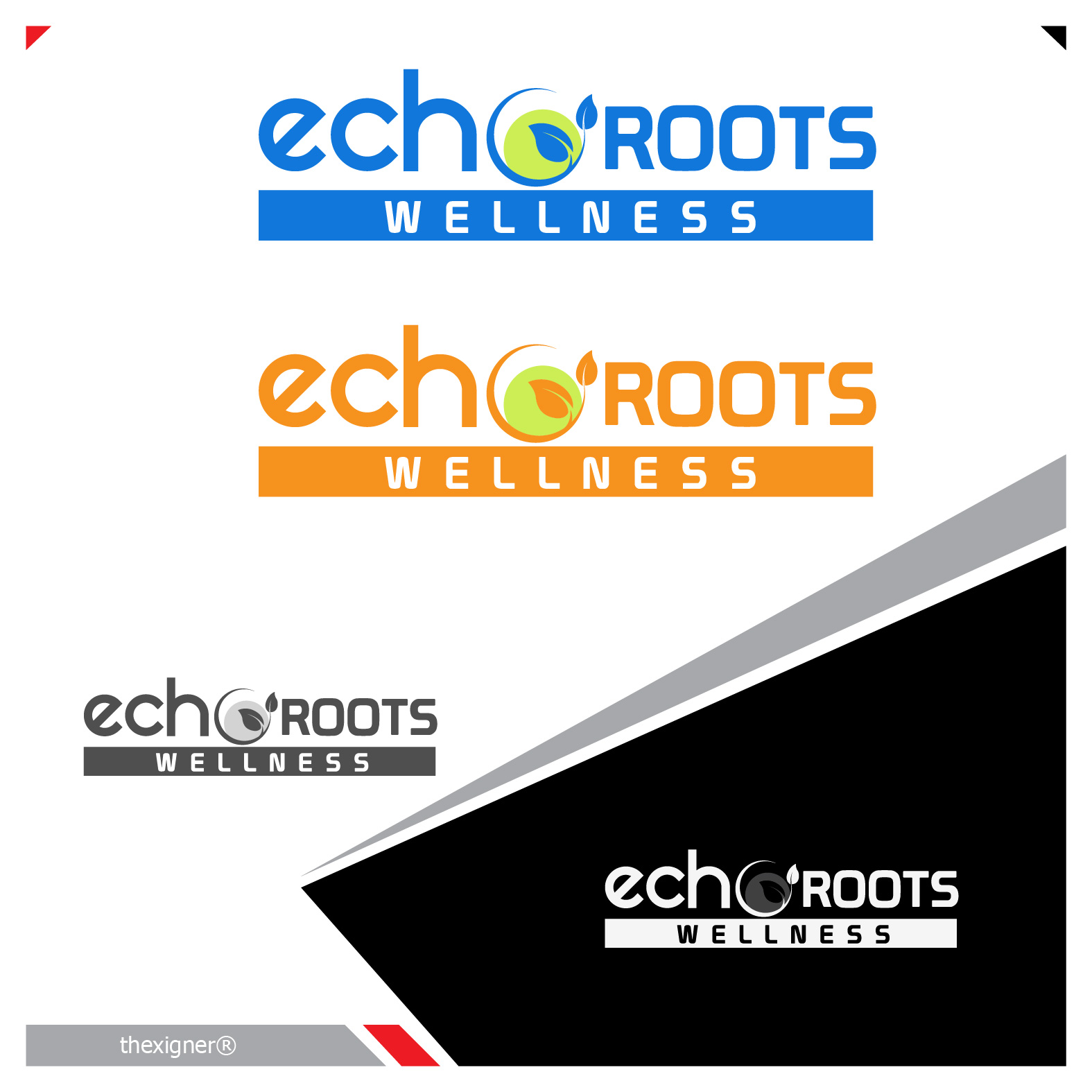 Logo Design by lagalag - Entry No. 65 in the Logo Design Contest Funky Logo Design for Echo Roots Wellness.