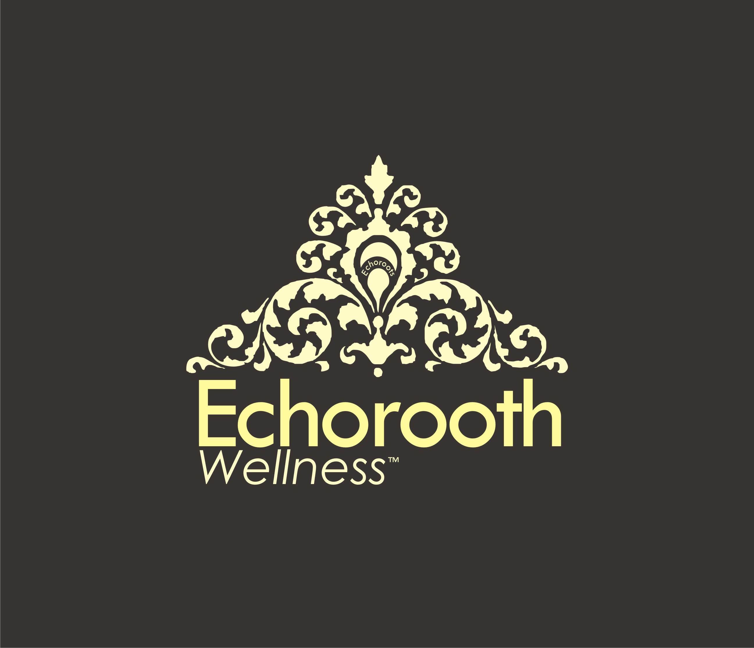 Logo Design by Eic Limber - Entry No. 102 in the Logo Design Contest Funky Logo Design for Echo Roots Wellness.