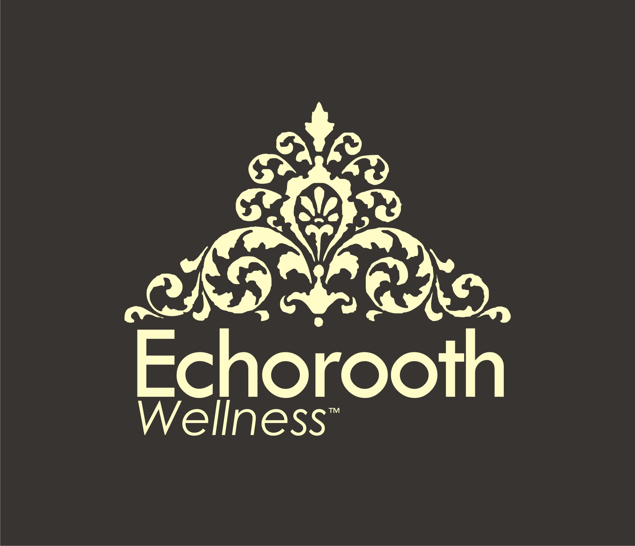 Logo Design by Eic Limber - Entry No. 103 in the Logo Design Contest Funky Logo Design for Echo Roots Wellness.