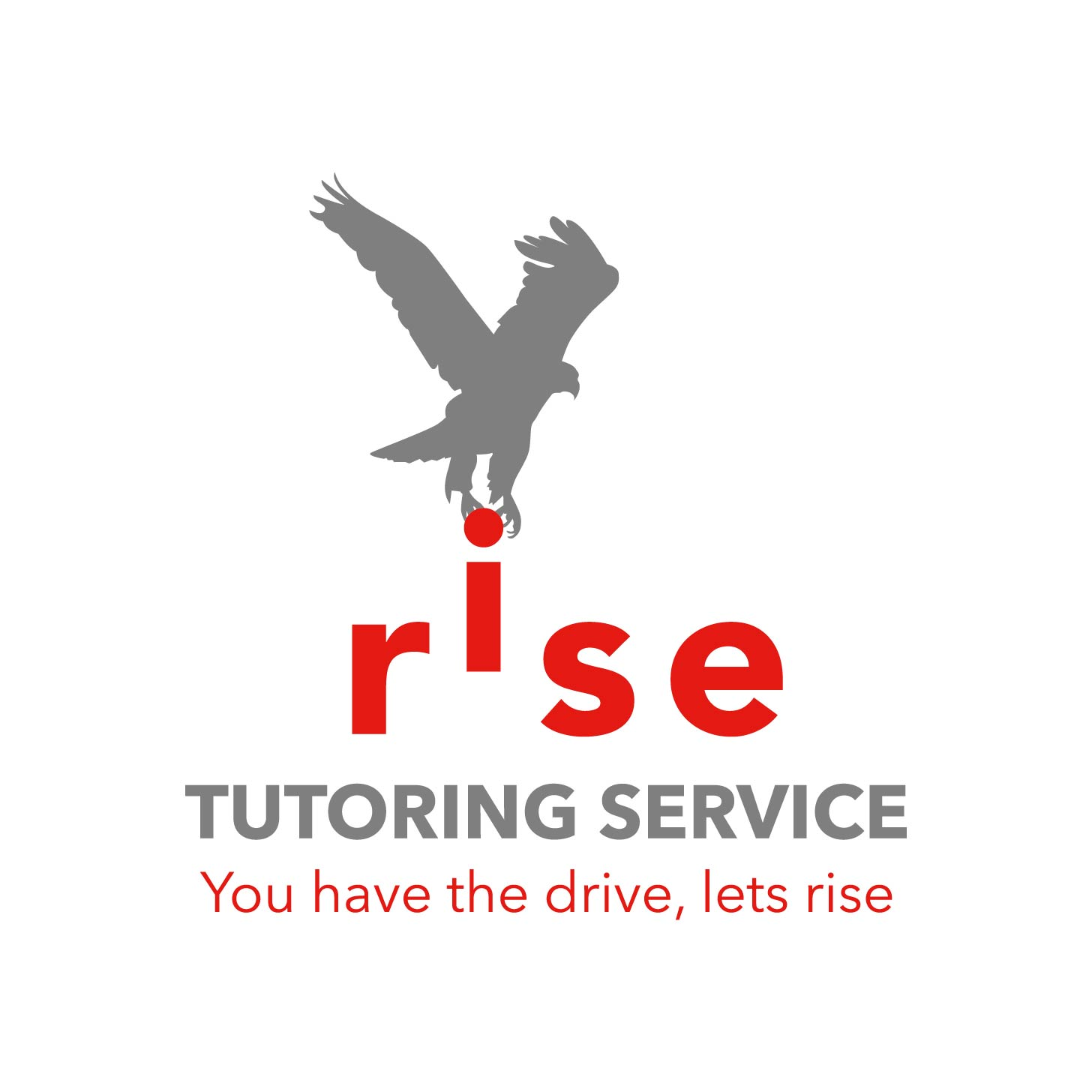 Logo Design by Cross Desain - Entry No. 86 in the Logo Design Contest Imaginative Logo Design for Rise Tutoring Service.