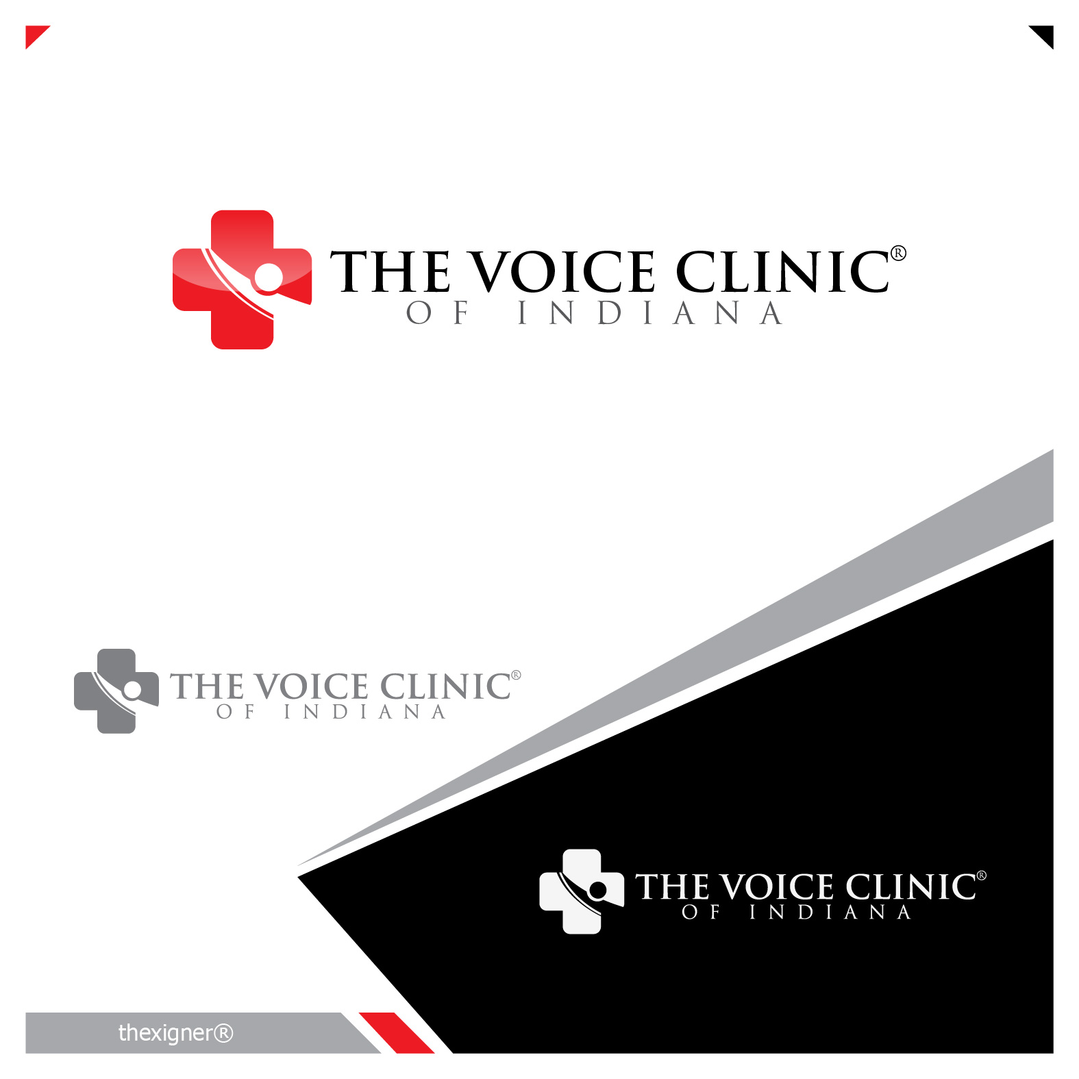 Logo Design by lagalag - Entry No. 31 in the Logo Design Contest Logo Design for The Voice Clinic of Indiana.