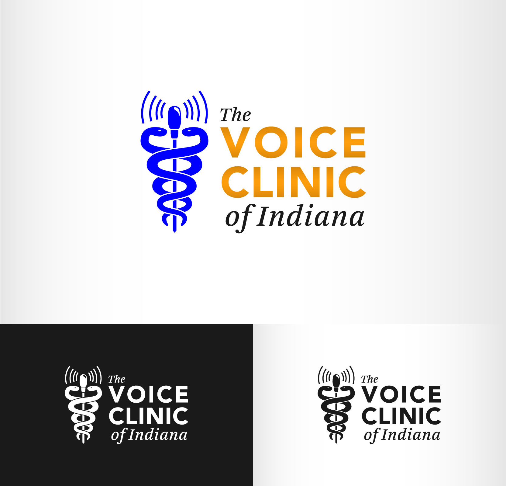 Logo Design by Andrés González - Entry No. 37 in the Logo Design Contest Logo Design for The Voice Clinic of Indiana.