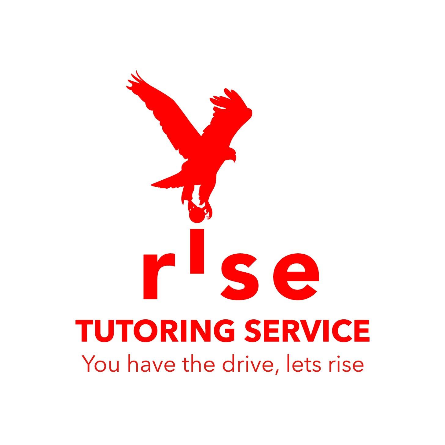 Logo Design by Cross Desain - Entry No. 193 in the Logo Design Contest Imaginative Logo Design for Rise Tutoring Service.