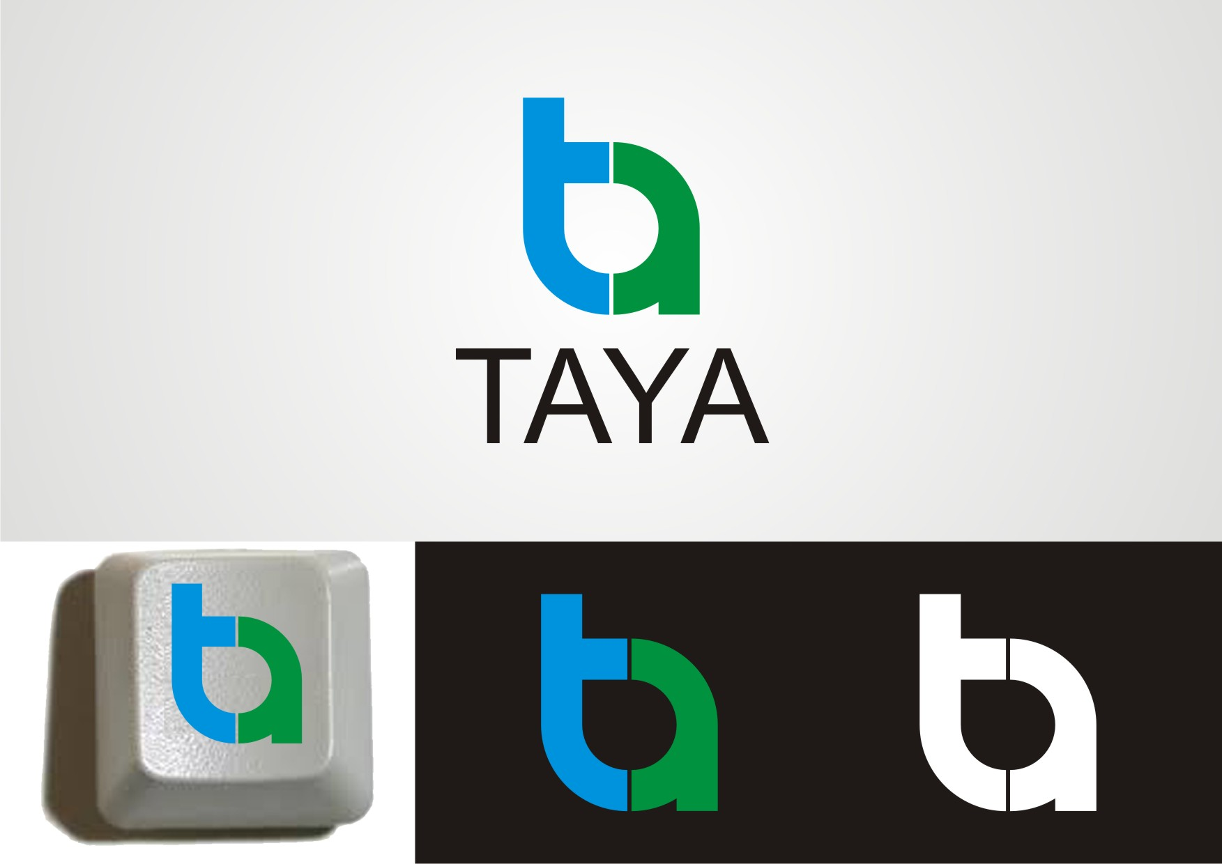 Logo Design by Private User - Entry No. 21 in the Logo Design Contest Imaginative Logo Design for TAYA.
