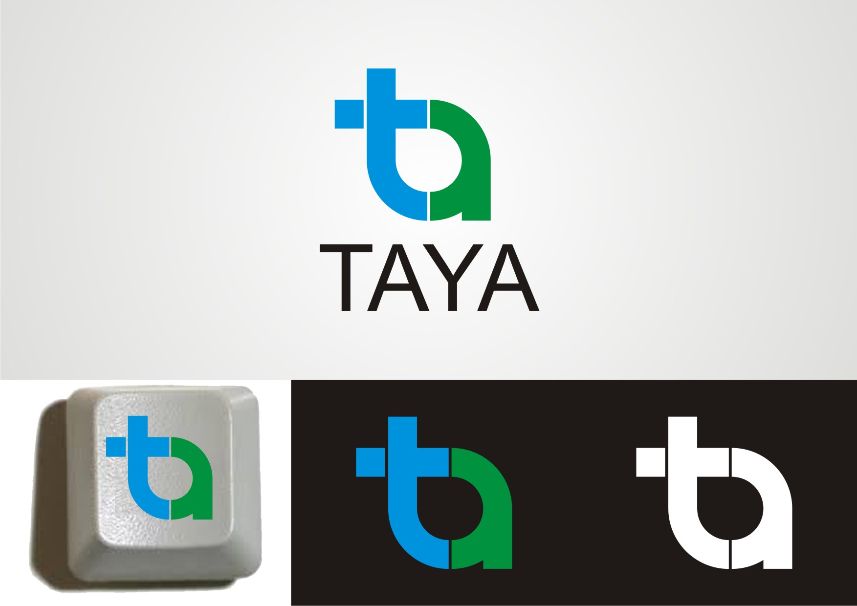 Logo Design by Private User - Entry No. 25 in the Logo Design Contest Imaginative Logo Design for TAYA.
