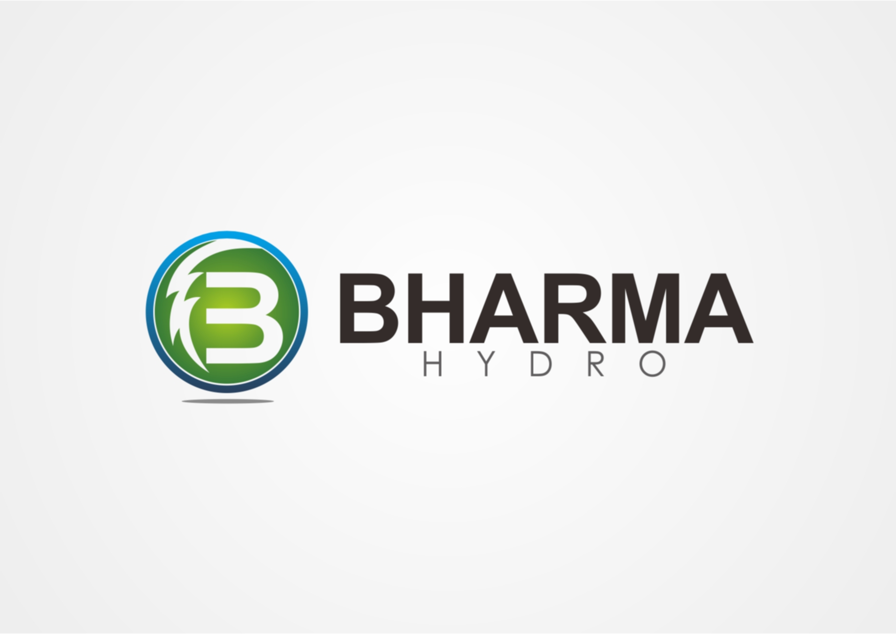 Logo Design by Private User - Entry No. 45 in the Logo Design Contest Creative Logo Design for Bharma Hydro.