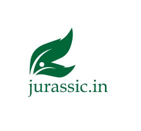 Logo Design by Sumeet Kakru - Entry No. 47 in the Logo Design Contest Unique Logo Design Wanted for jurassic.in.