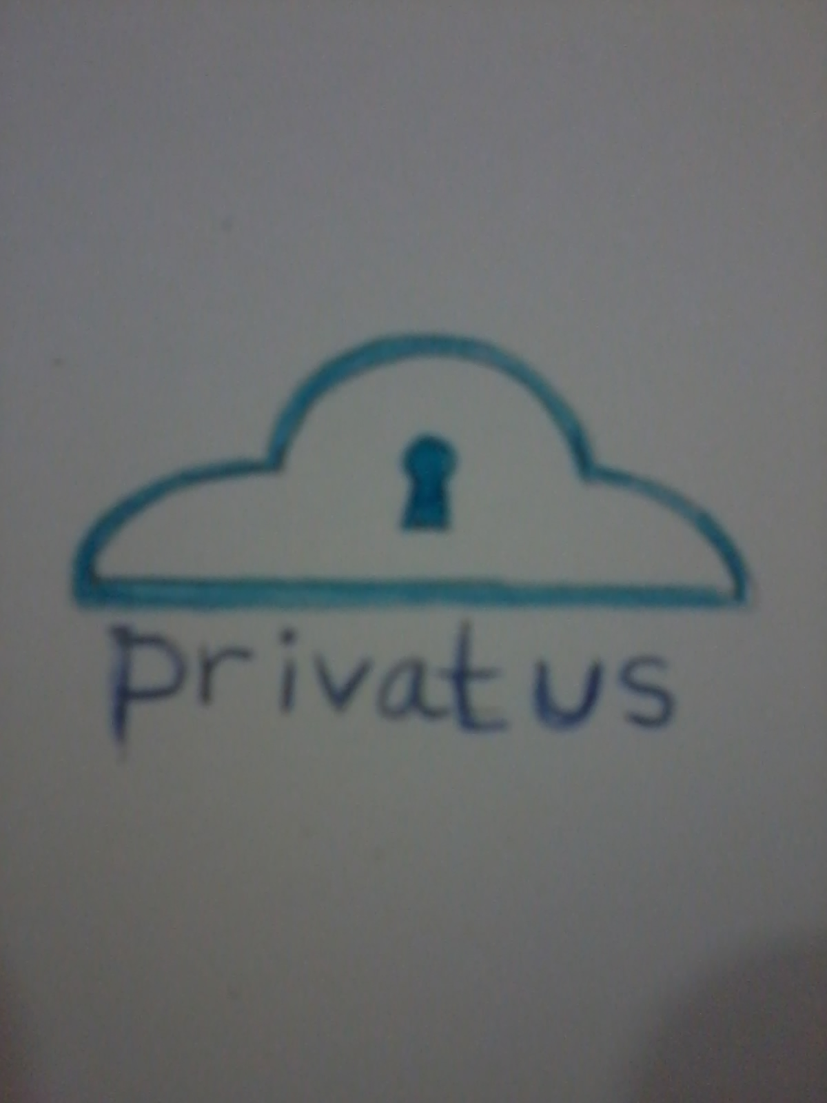 Logo Design by mediaproductionart - Entry No. 36 in the Logo Design Contest New Logo Design for privatus.
