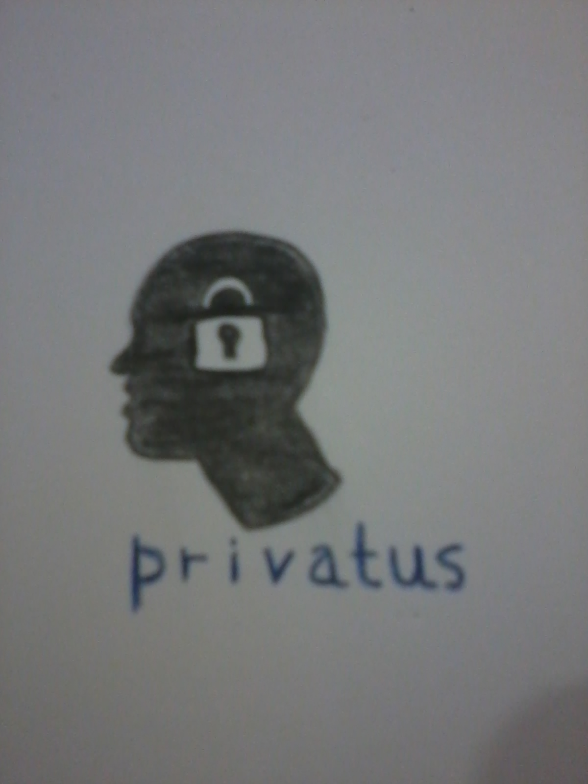 Logo Design by mediaproductionart - Entry No. 39 in the Logo Design Contest New Logo Design for privatus.