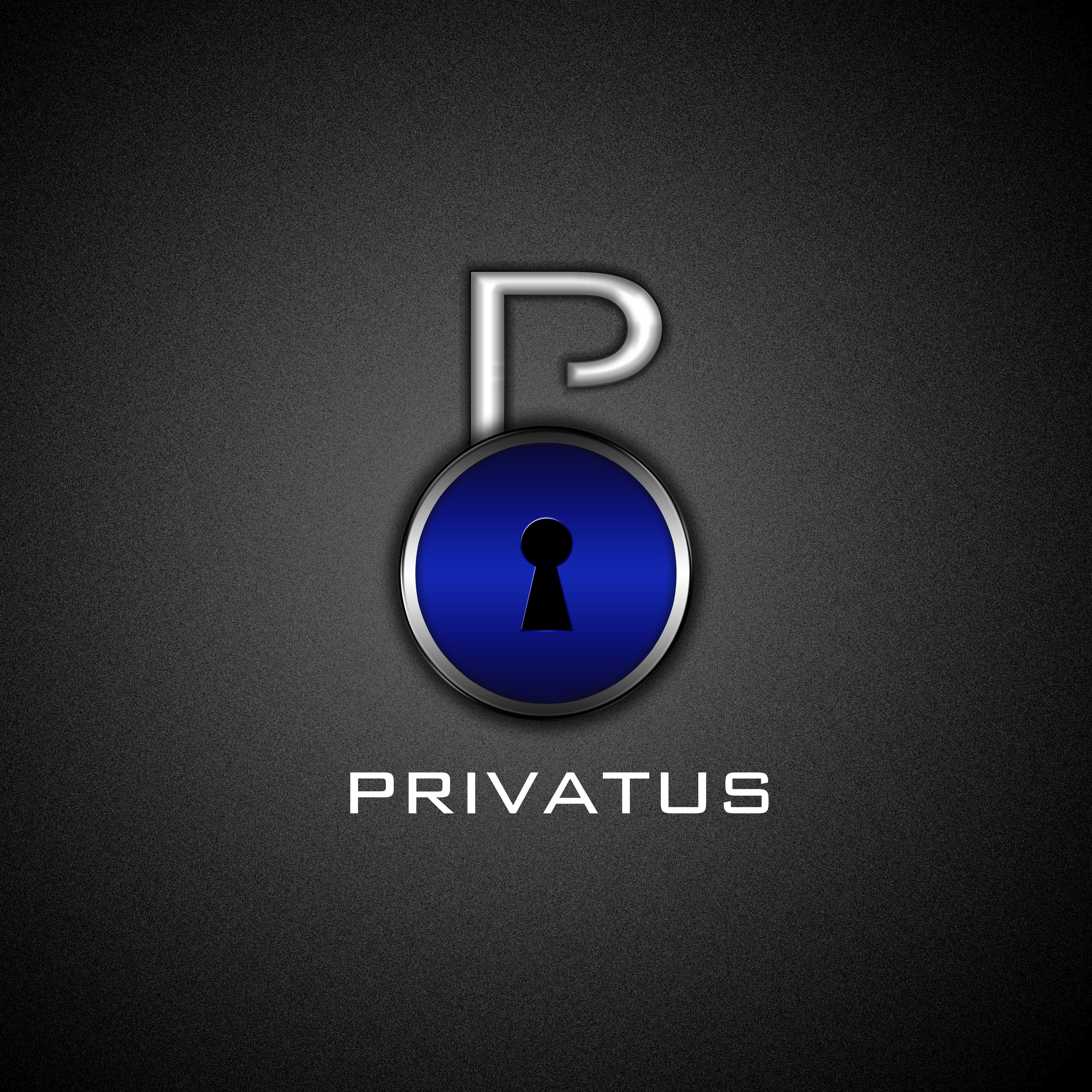 Logo Design by Milan Krstić - Entry No. 138 in the Logo Design Contest New Logo Design for privatus.