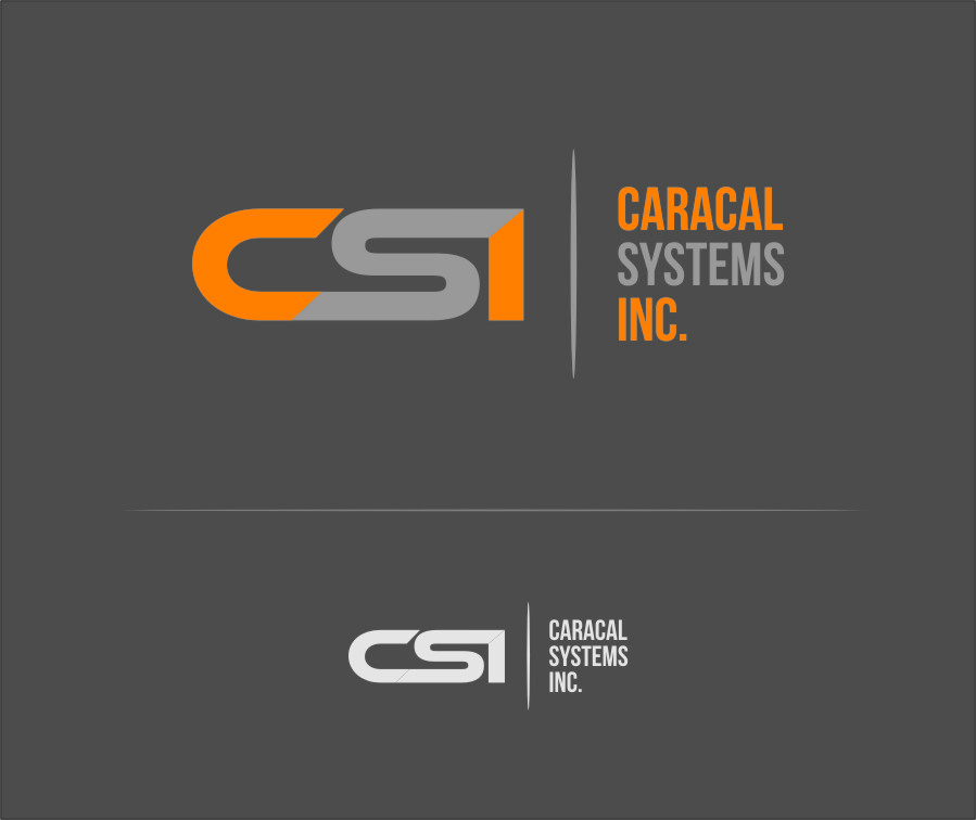 Logo Design by Ngepet_art - Entry No. 3 in the Logo Design Contest Inspiring Logo Design for Caracal Systems Inc..