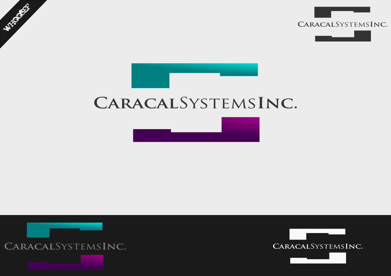 Logo Design by whoosef - Entry No. 11 in the Logo Design Contest Inspiring Logo Design for Caracal Systems Inc..