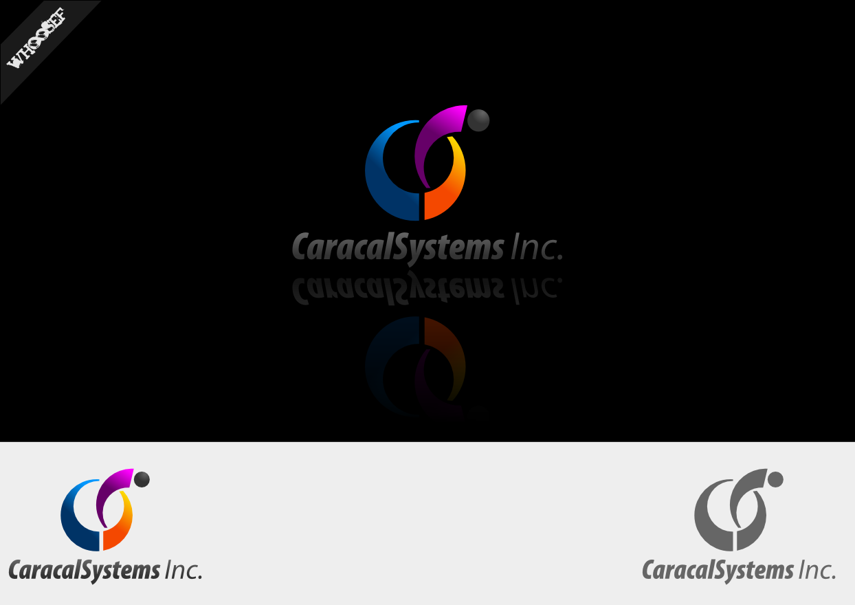Logo Design by whoosef - Entry No. 14 in the Logo Design Contest Inspiring Logo Design for Caracal Systems Inc..