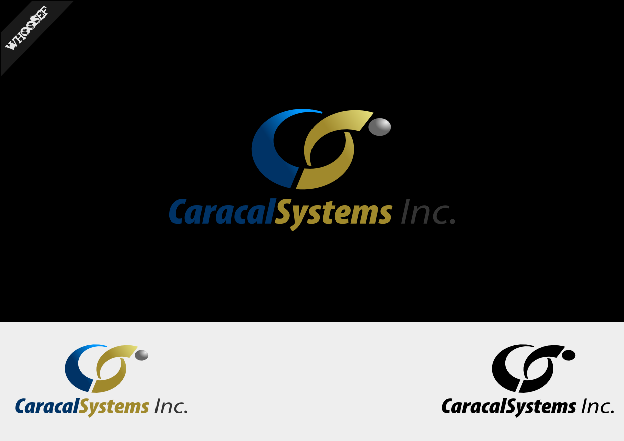 Logo Design by whoosef - Entry No. 15 in the Logo Design Contest Inspiring Logo Design for Caracal Systems Inc..