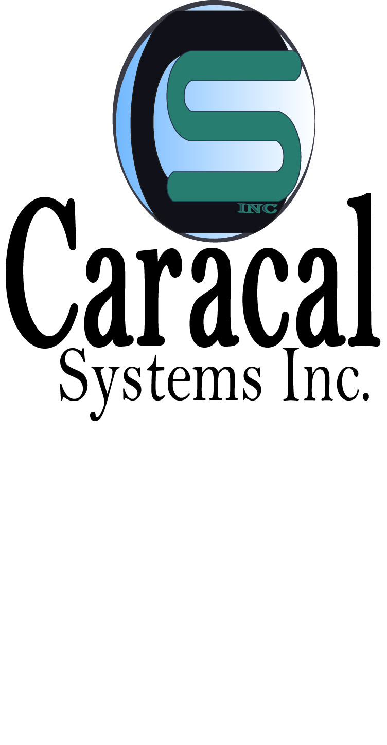 Logo Design by Susan Palmer - Entry No. 19 in the Logo Design Contest Inspiring Logo Design for Caracal Systems Inc..