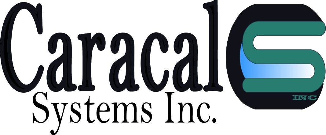 Logo Design by Susan Palmer - Entry No. 20 in the Logo Design Contest Inspiring Logo Design for Caracal Systems Inc..