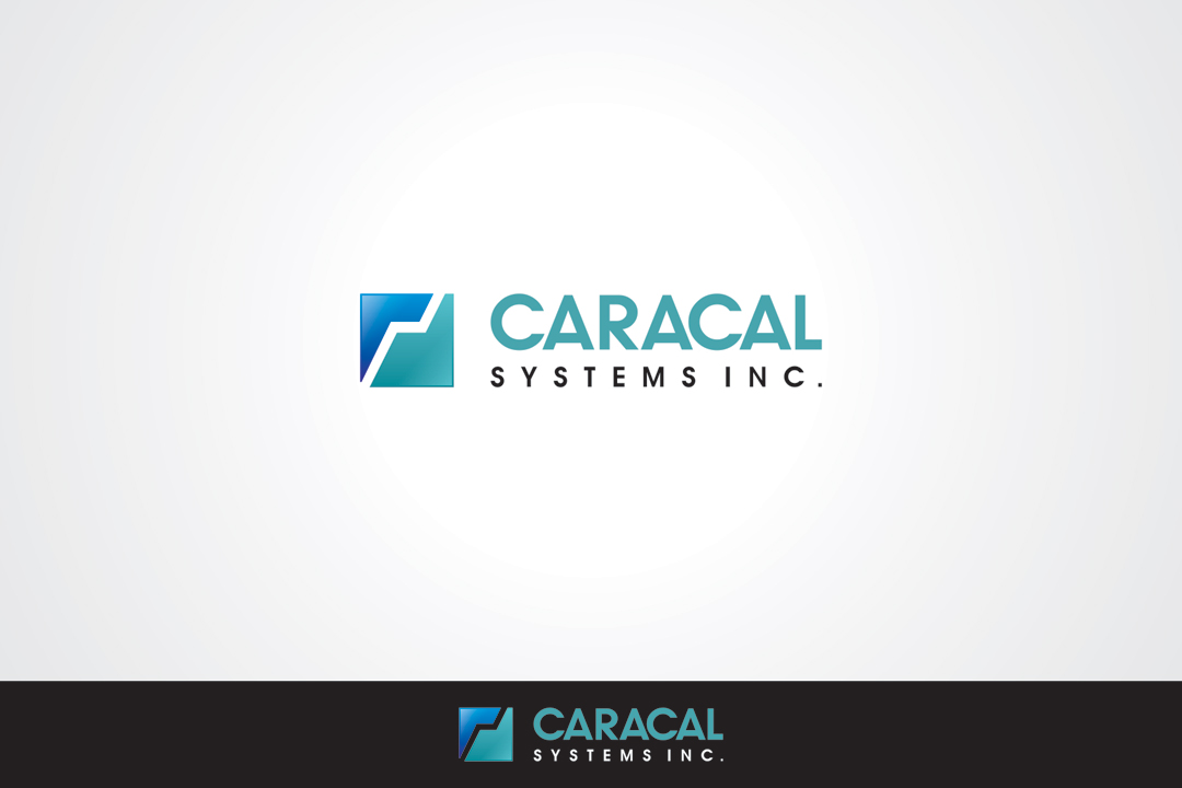 Logo Design by vdhadse - Entry No. 23 in the Logo Design Contest Inspiring Logo Design for Caracal Systems Inc..
