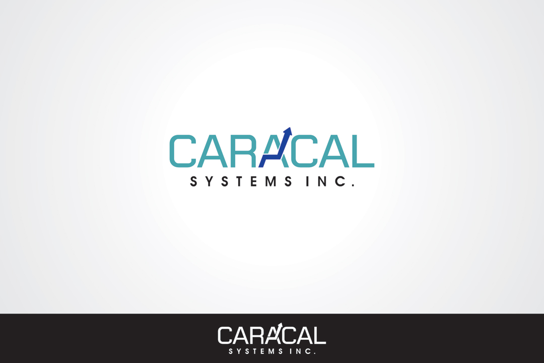Logo Design by vdhadse - Entry No. 25 in the Logo Design Contest Inspiring Logo Design for Caracal Systems Inc..