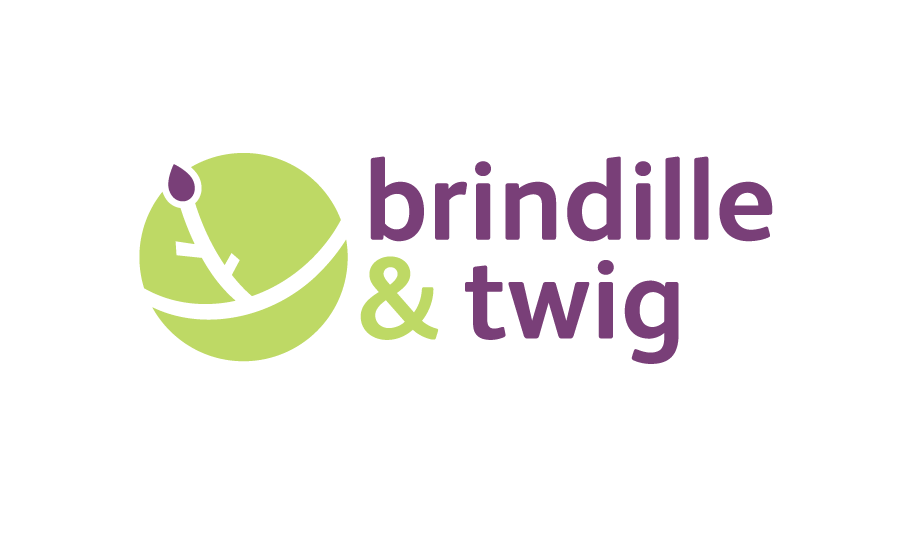 Logo Design by Christina Evans - Entry No. 2 in the Logo Design Contest Logo Design for Brindille & Twig.