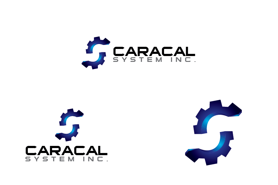 Logo Design by Private User - Entry No. 30 in the Logo Design Contest Inspiring Logo Design for Caracal Systems Inc..
