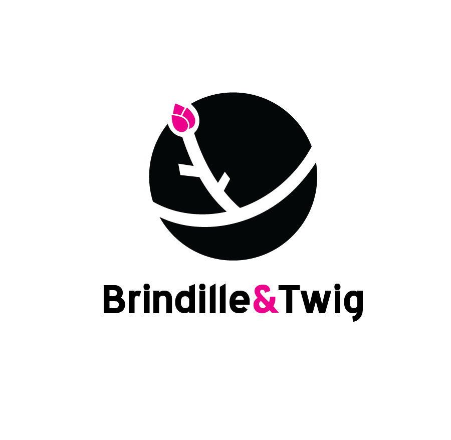 Logo Design by Christina Evans - Entry No. 4 in the Logo Design Contest Logo Design for Brindille & Twig.