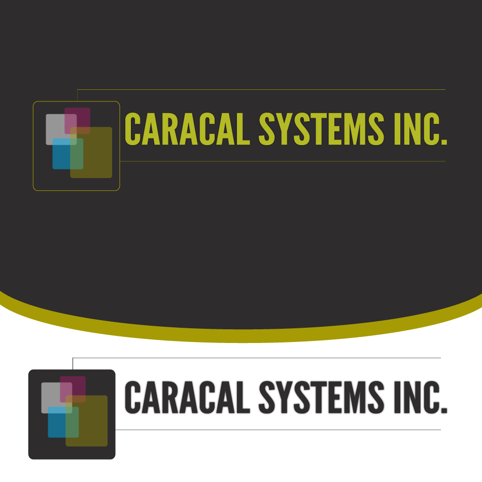 Logo Design by moonflower - Entry No. 33 in the Logo Design Contest Inspiring Logo Design for Caracal Systems Inc..