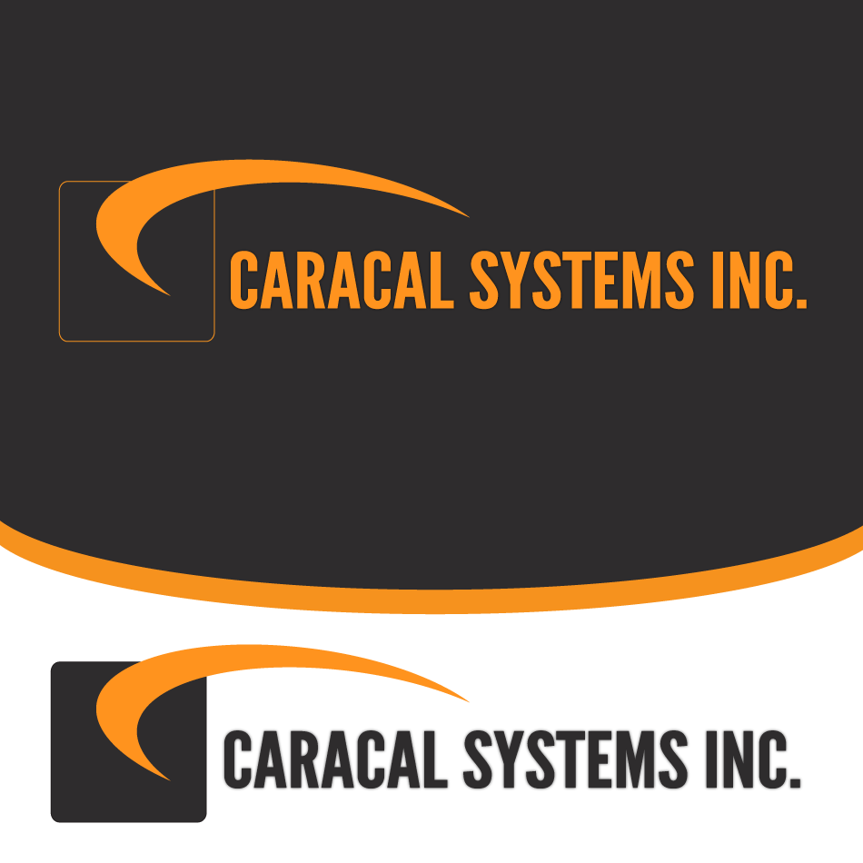 Logo Design by moonflower - Entry No. 35 in the Logo Design Contest Inspiring Logo Design for Caracal Systems Inc..
