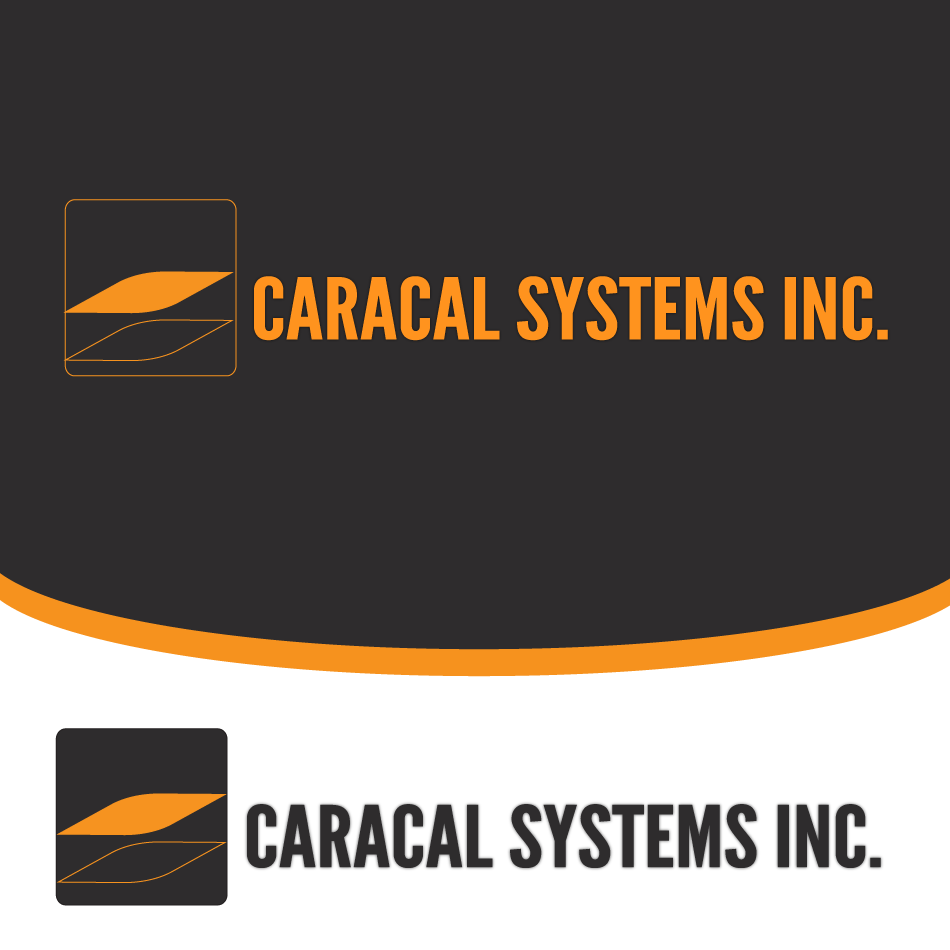 Logo Design by moonflower - Entry No. 36 in the Logo Design Contest Inspiring Logo Design for Caracal Systems Inc..