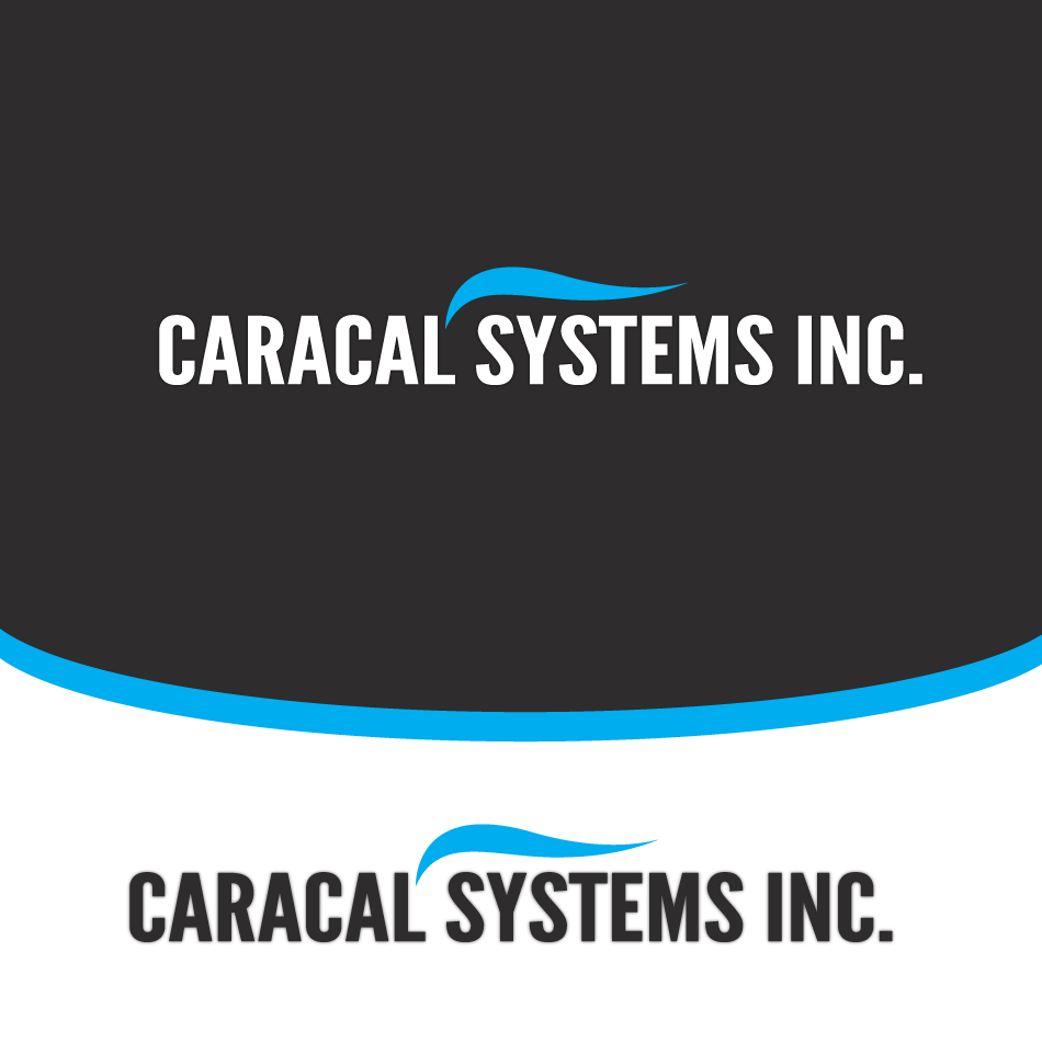 Logo Design by moonflower - Entry No. 37 in the Logo Design Contest Inspiring Logo Design for Caracal Systems Inc..