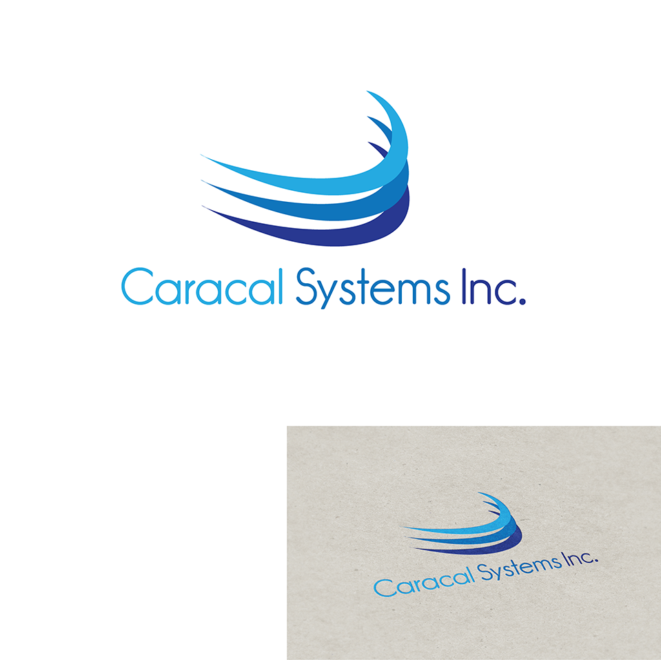 Logo Design by robken0174 - Entry No. 38 in the Logo Design Contest Inspiring Logo Design for Caracal Systems Inc..