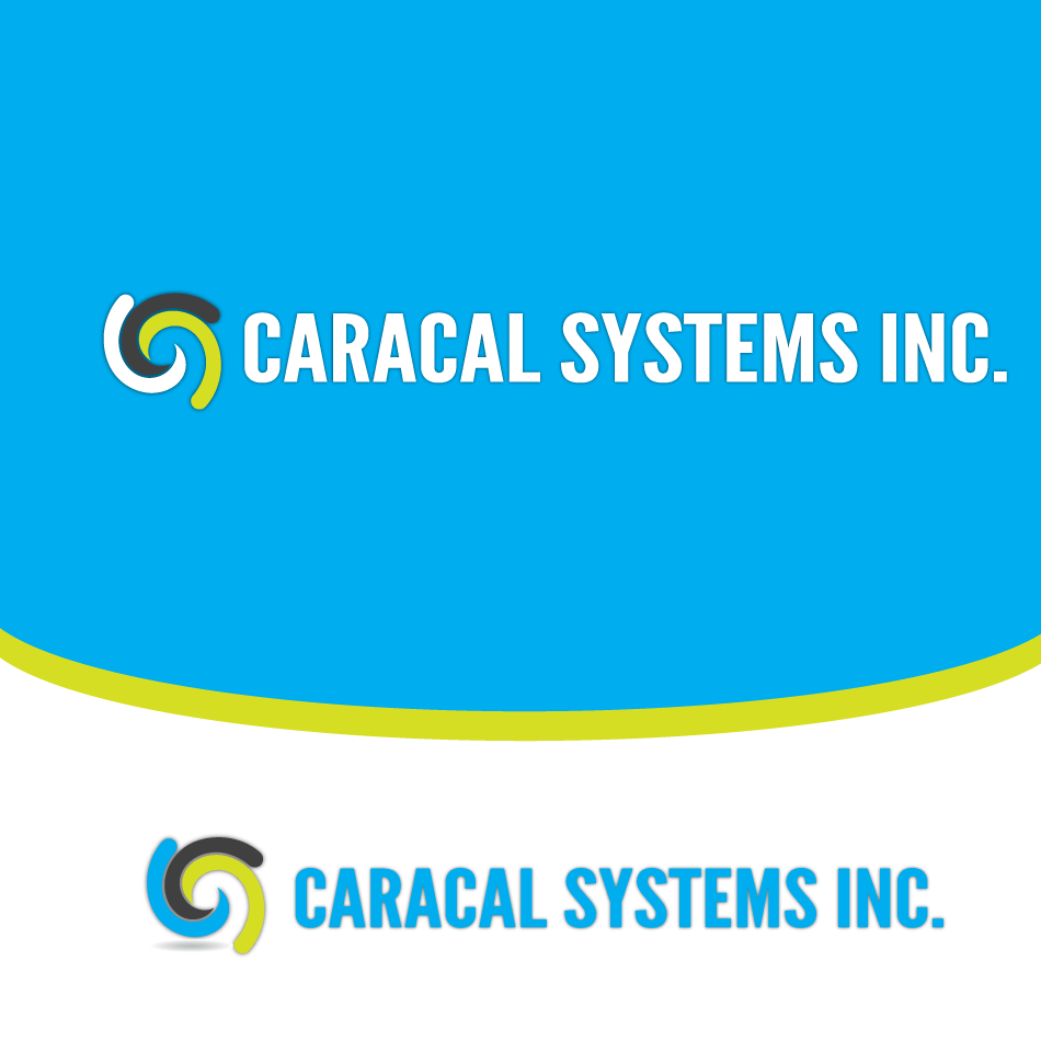 Logo Design by moonflower - Entry No. 39 in the Logo Design Contest Inspiring Logo Design for Caracal Systems Inc..