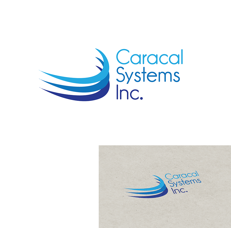 Logo Design by robken0174 - Entry No. 40 in the Logo Design Contest Inspiring Logo Design for Caracal Systems Inc..