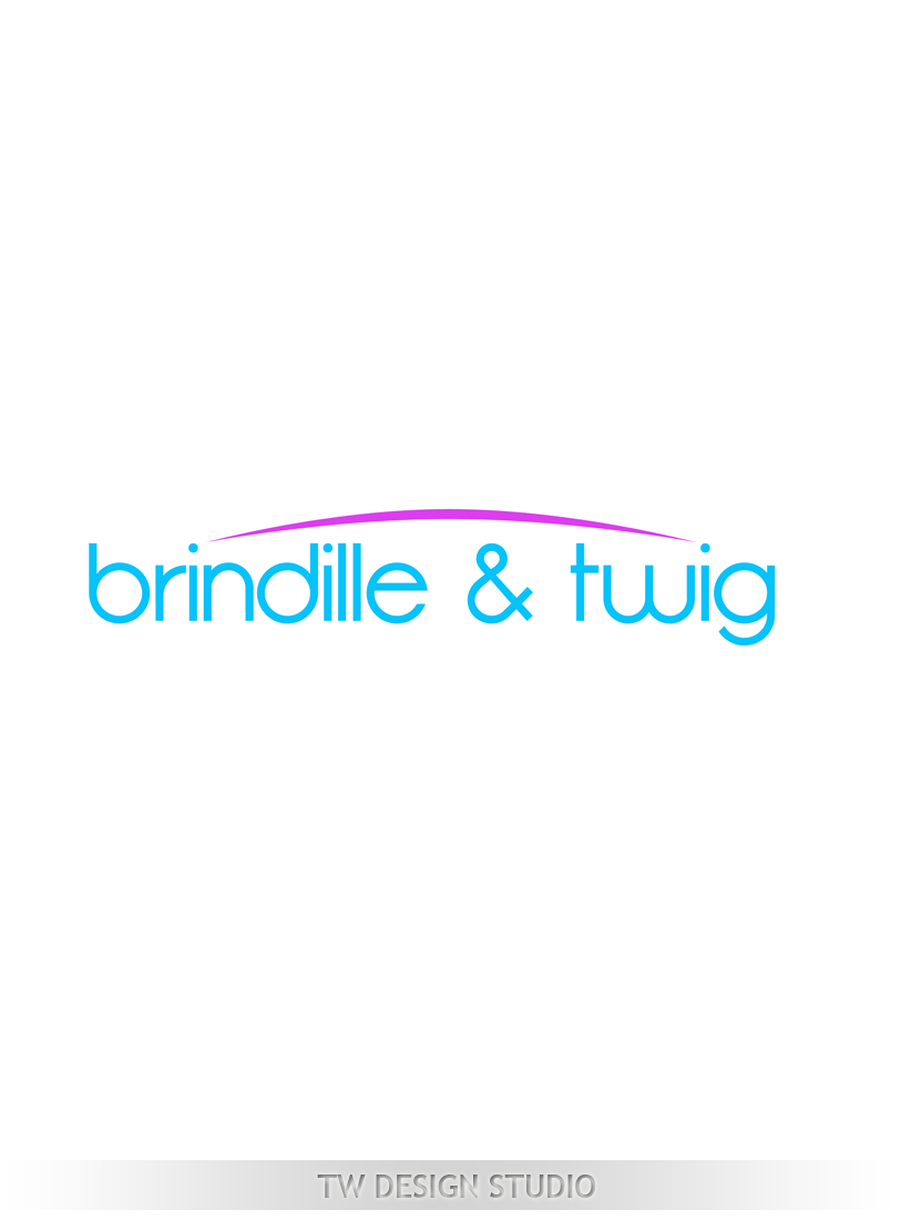 Logo Design by Private User - Entry No. 6 in the Logo Design Contest Logo Design for Brindille & Twig.