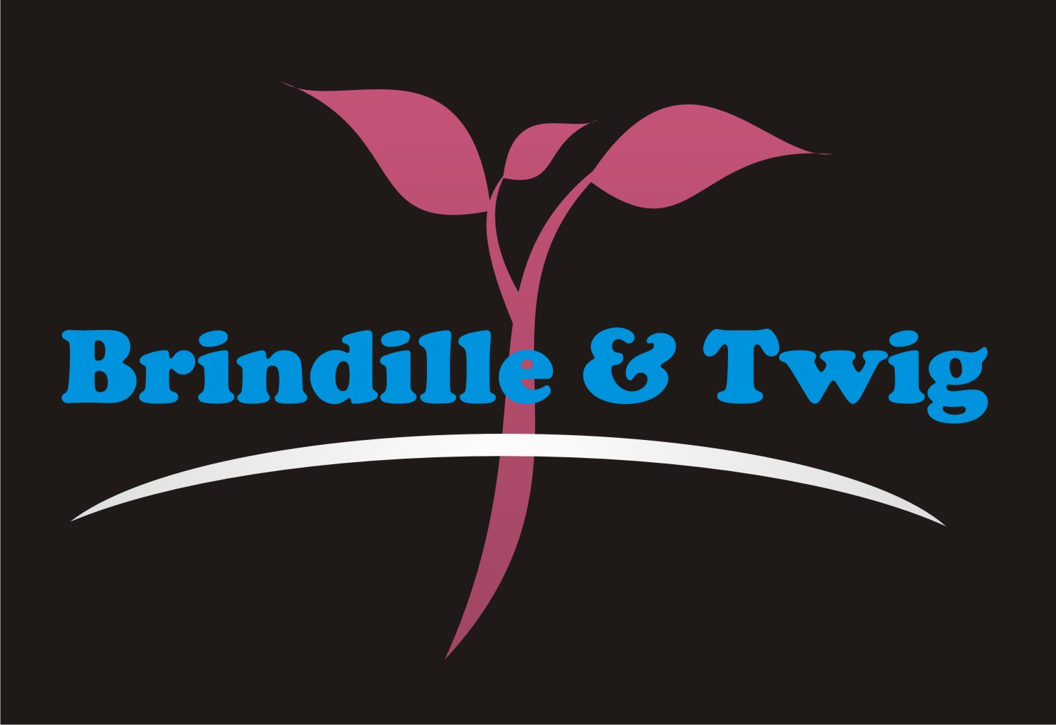 Logo Design by Gaber Barabaraberebere - Entry No. 8 in the Logo Design Contest Logo Design for Brindille & Twig.